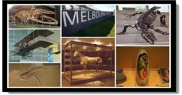 墨爾本市區景點-墨爾本博物館 Melbourne Museum