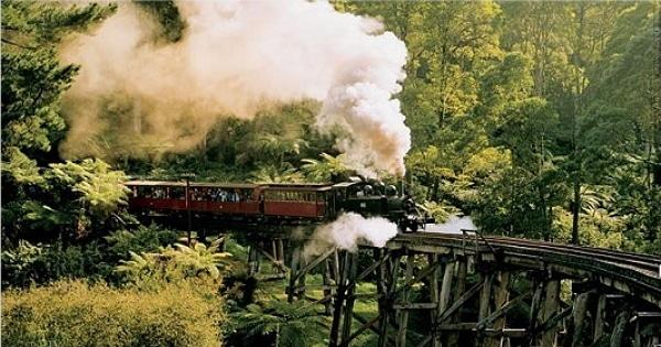 墨爾本旅遊行程:代號DY 丹頓農山脈蒸汽火車+亞拉河谷酒莊