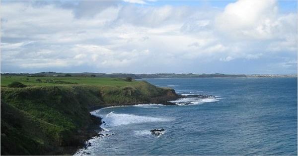 墨爾本旅遊行程:代號MPI 摩寧頓半島 + 菲利浦島企鵝