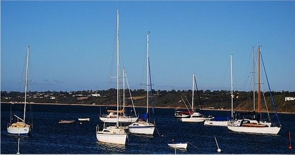 墨爾本旅遊行程-代號MP-摩寧頓半島+餵食野生大嘴鳥