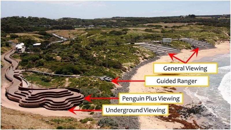 墨爾本企鵝保育中心門票種類
