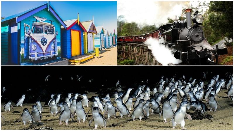 墨爾本彩色小屋+蒸汽火車+企鵝島